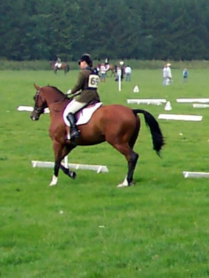 Buckminster Park Dressage